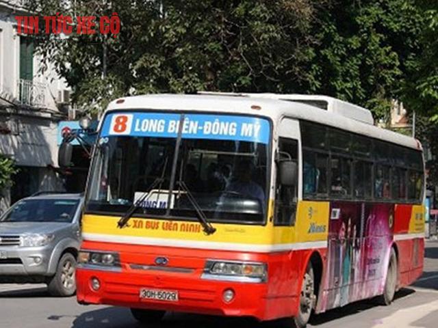 xe buýt số 8