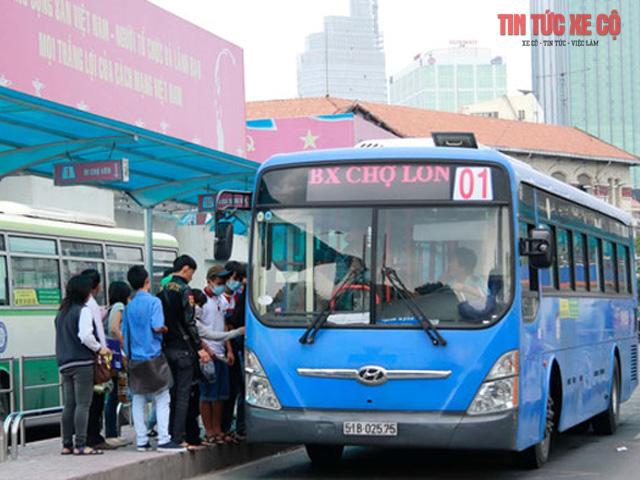 xe bus 01 tphcm