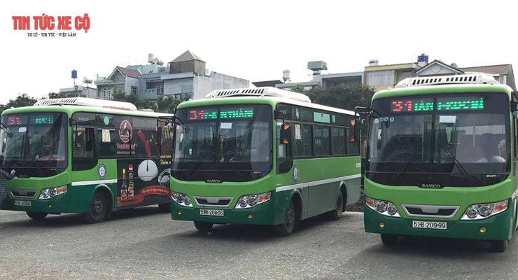 xe bus 31 tphcm