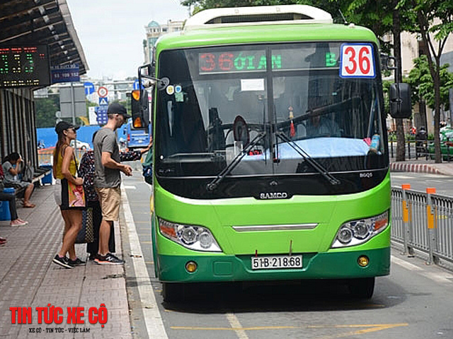 xe bus 36 hcm