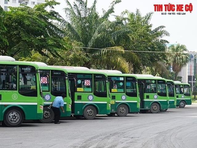 xe bus 48 tphcm
