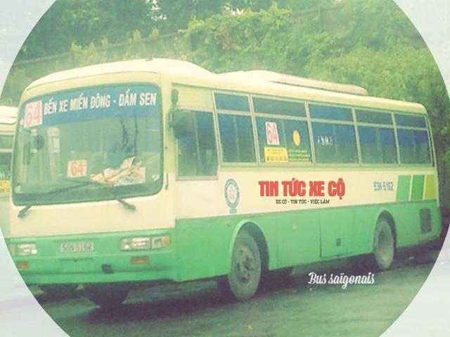 xe bus 64 tphcm