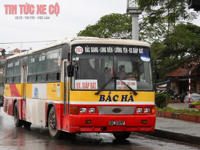xe bus 203